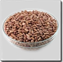 Picture of Rajma Chitkabara 1kg