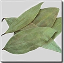 Picture of Tej Patta (Clean Bay Leaf) 25gm